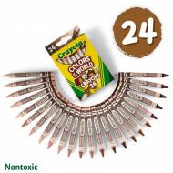 Creta colorata Crayola 24 bucati