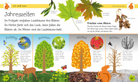 Carte in limba germana, In padure, Ich weiß was! Im Wald, dk, 4+