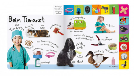 Carte in limba germana, primele cuvinte despre meserii, Erstes Lernen. Berufe, DK, 12+