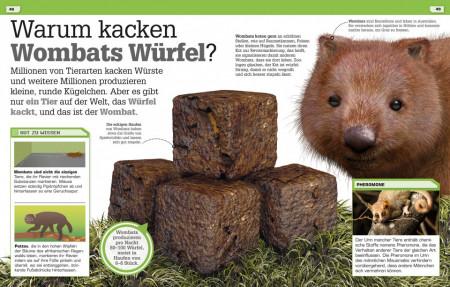 Carte in limba germana, Alles Kacke, oder was? dk, 7+