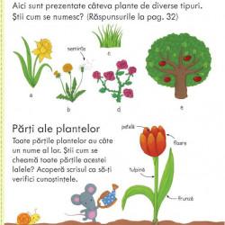 Cum cresc plantele, usborne