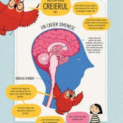 Cum functioneaza creierul uman? - Usborne