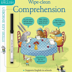 Wipe-Clean Comprehension 8-9, USBORNE