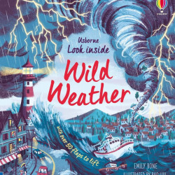 Carte cu multe clapete pentru copii curiosi, Look Inside Wild Weather, usborne, 5+
