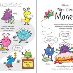 Carte de tip scrie și șterge la nesfârșit, Wipe-clean money