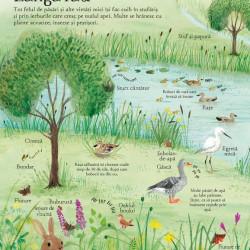 Marea carte ilustrata a naturii (Usborne)
