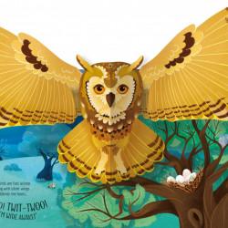 Pop-Up Birds, Laura Cowan, Usborne