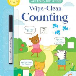 Carte de tip scrie și șterge la nesfârșit, Wipe-clean counting