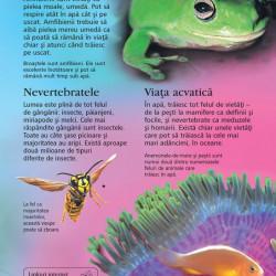 Prima mea enciclopedie despre animale, Usborne