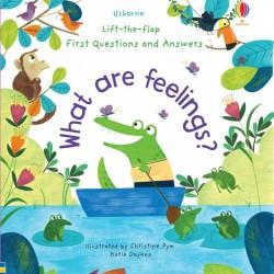 Carte cu multe clapete pentru copii curiosi, What are feelings? , usborne