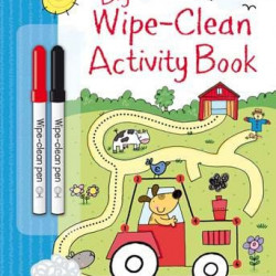 Carte de tip scrie și șterge la nesfârșit Big wipe-clean activity book