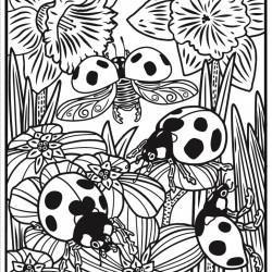 Carte magica de pictat doar cu apa, Bugs Magic Painting Book, usborne