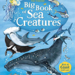 Big book of sea creatures, Usborne