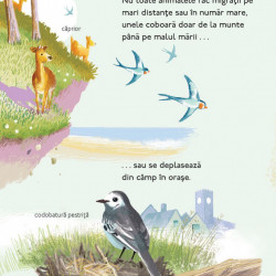 Calatorii uimitoare ale animalelor, Chris Packham