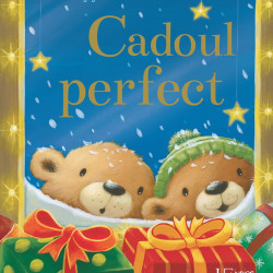 Cadoul perfect, Caroline Pedler, Stella J. Jones