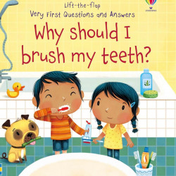 Carte cu multe clapete pentru copii curiosi, Why Should I Brush My Teeth?