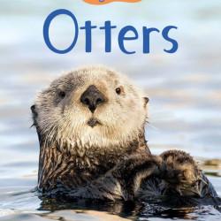 Otters, usborne beginners, 4+