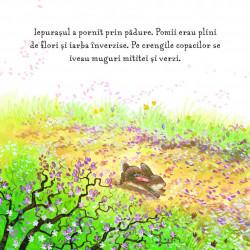 Primavara - Aventura Iepurasului - Anita Loughrey,Daniel Howarth