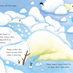 Peep Inside Snowy Places, Usborne, 3+