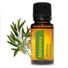 Ulei esential Melaleuca alternifolia, Tea tree, (Arbore de ceai), 15 ml, pentru curățarea și purificarea tenului, pielii și a unghiilor, imperfectiuni ale pielii, Doterra