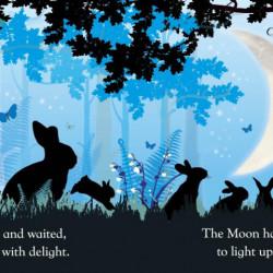 Carte cu leduri despre Luna - Goodnight Baby Moon, Dk