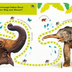 Carte senzoriala, Folge der Fingerspur, Wilde Tiere, 18+, dK