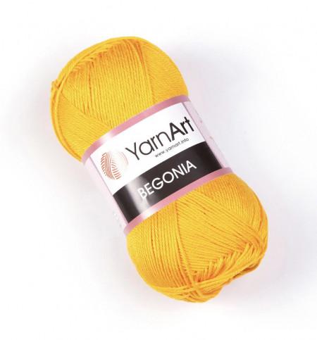 Begonia 5307