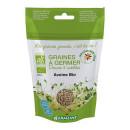 Seminte de ovaz eco pentru germinat 200g