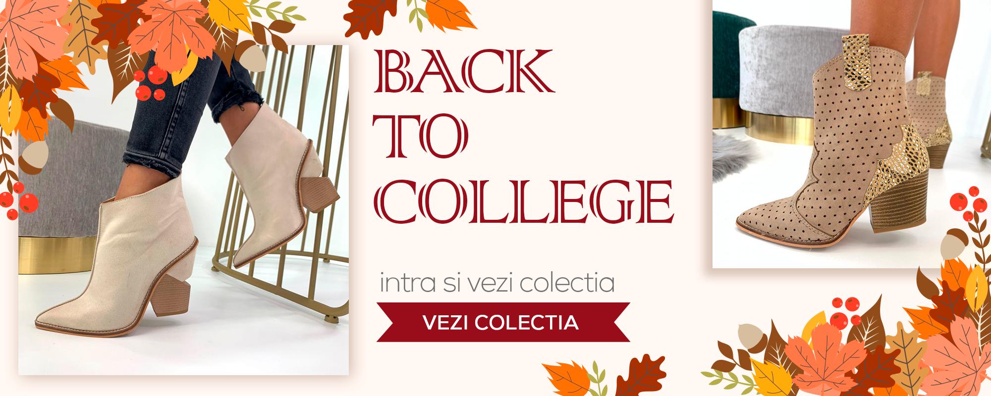 Incaltaminte Dama - Colectia Back to College - Reverse.ro