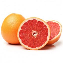 Grapefruit - pret/kg