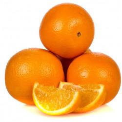 Portocale - pret/kg