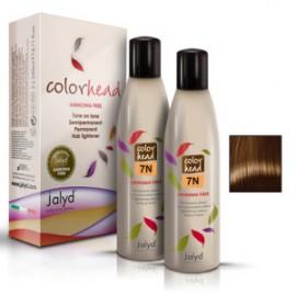 Color Head 7N Blond  1x240ml