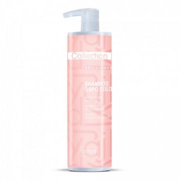Collection Brilliance - Șampon după vopsire 1000ml