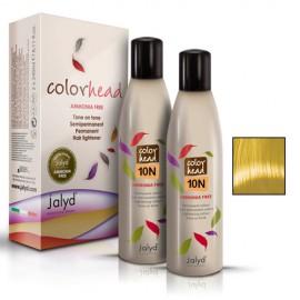 Color Head 10N Blond Superdeschis 1x240ml