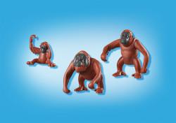 Familie De Urangutani