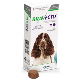 Imagens Bravecto Flea and Tick Protection 10 - 20kg (22 - 44 lbs) 1 chew - free shipping