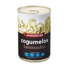 Imagens Cogumelos