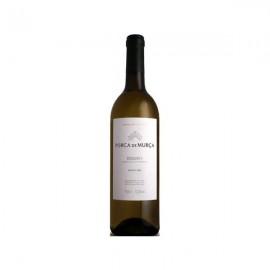 Imagens Vinho branco Douro