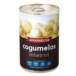 """Cogumelos """"Amanhecer"""""""