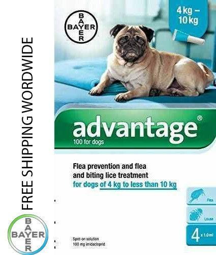 Imagens Pack 4 Bayer Advantage 100 Dog 4 - 10kg - free shipping