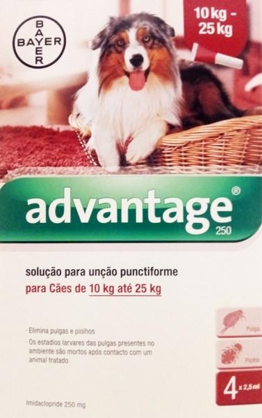 Pack 4 Bayer Advantage 250 Large Dog 10Kg - 25Kg- free shipping