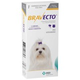 Bravecto Flea and Tick Protection Size 2 - 4.5kg (4.4 - 9.9 lbs) 1 chew