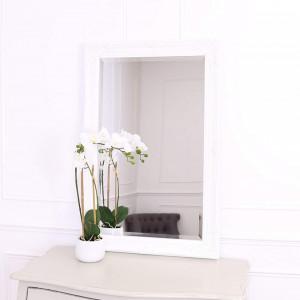 OGG108 - Oglinda 60x90 cm, dreptunghiulara perete dormitor/living/baie - Rama Argintie