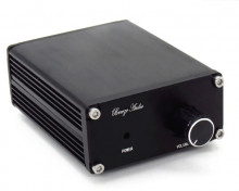 Amplificador Para Subwoofer 100W RMS