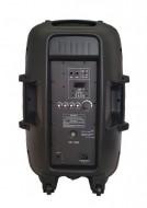 Coluna Amplificada 15'' USB / SD + Bluetooth - 300W