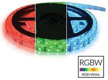 Fita 300 LEDs SMD5050 Flexivel IP20 RGB+W 12V (5 mts)