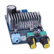 Amplificador para Subwoofer (Módulo) Digital 200W Max