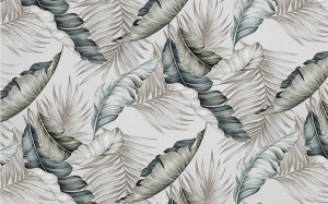 Dark and Light Feathers