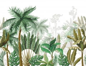 Fototapet Copaci Tropicali