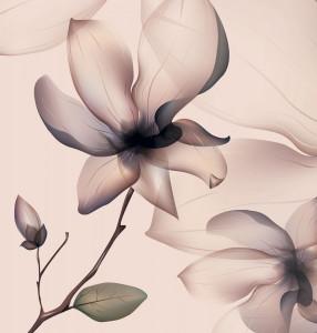 Fototapet White Pink Flower